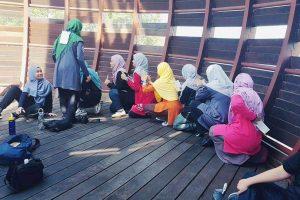 Majlis Pelajar IPIP